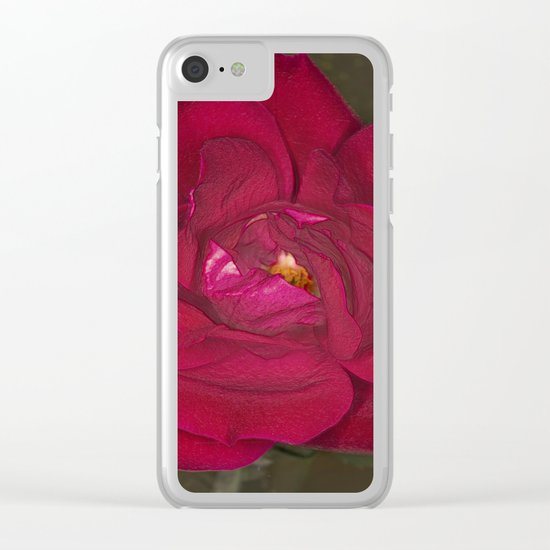 Red Rose in bloom Clear iPhone Case