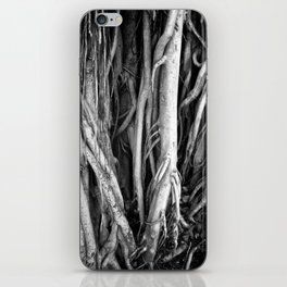 InDepth iPhone Skin
