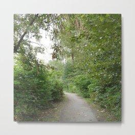 Fraser Pathway Metal Print