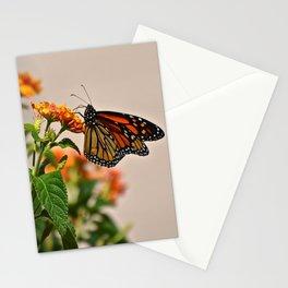 lots of orange Stationery Cards