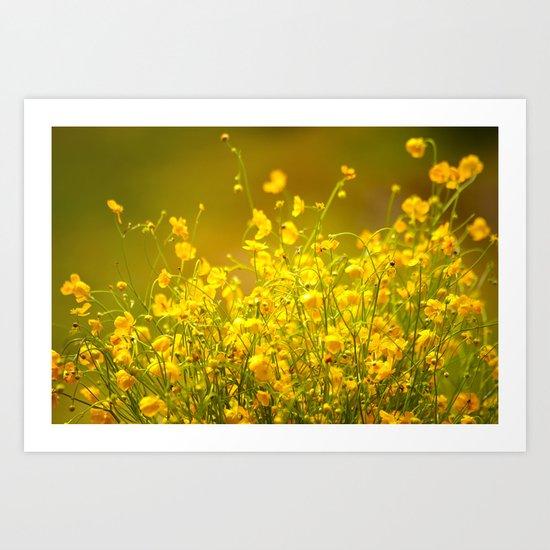 Yellow Mellow Flowers Art Print