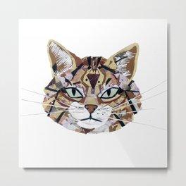 Scottish Wild Cat Metal Print