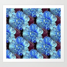 Blue Camelias Art Print