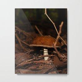 Chestnut Bolete Metal Print
