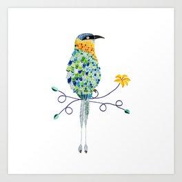 Bird of Costa Rica, pajaro Bobo Art Print