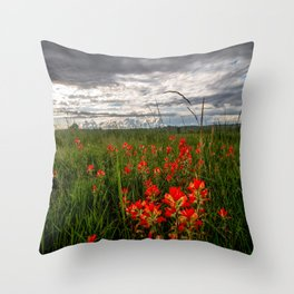 Brighten the Day - Indian Paintbrush Wildflowers in Eastern Oklahoma Throw Pillow