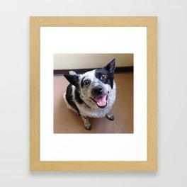 BCP's Happy Face Framed Art Print