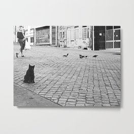 Black Cat Sitting on Cobblestone Street in Porto Metal Print
