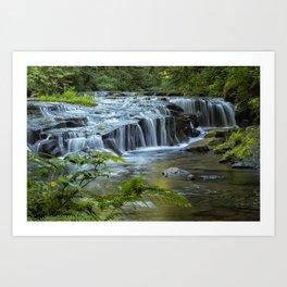 Ledge Falls, No. 4 Art Print