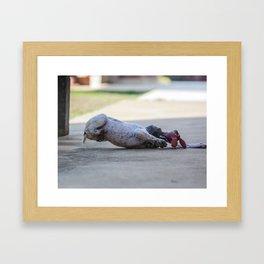 Se joga! Framed Art Print