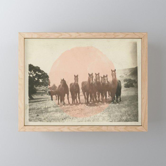 Band of Horses - Peach Framed Mini Art Print
