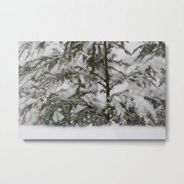 Winter in Maine Metal Print
