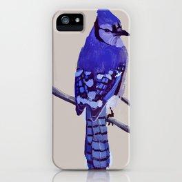 Blue Jay Bird iPhone Case