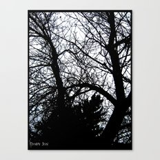 Treeshadow Canvas Print