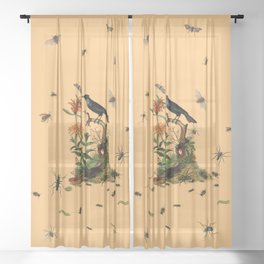 Halloween and entomology Sheer Curtain