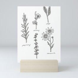 Kitchen Herbs Mini Art Print