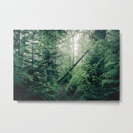 Fallen Tree in Misty Forest Metal Print