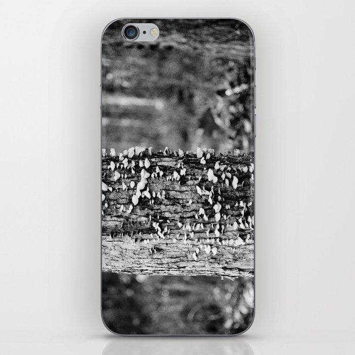 Black and White Tree iPhone Skin