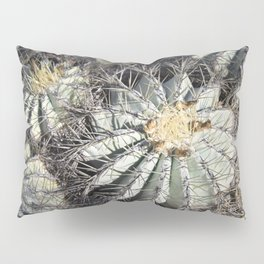 You Are Looking Sharp Pillow Sham