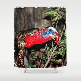 Wild Turkey Close Up Shower Curtain