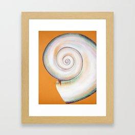 Pearl White Moon Shell Framed Art Print
