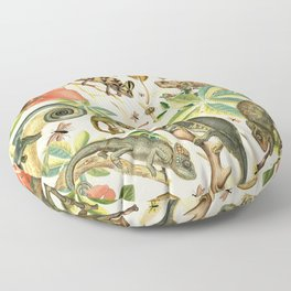 Chameleon Party Floor Pillow