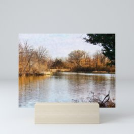 Woods Lake - Shelbyville, IL Mini Art Print