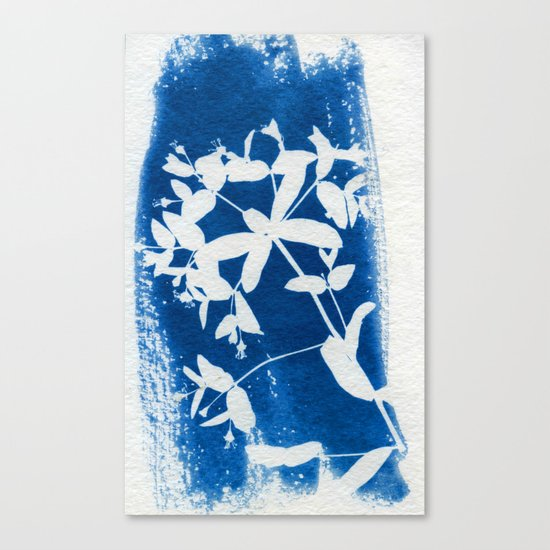 Herbal Sunprint #5 Canvas Print