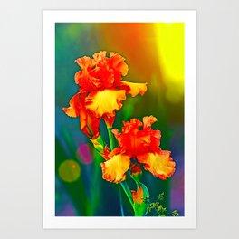 Electrified Orange Iris in the Garden Art Print