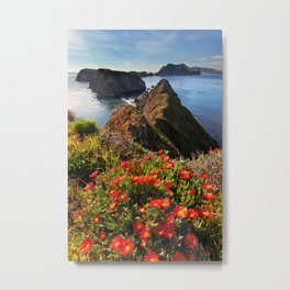 Anacapa Island and Ice Plant, Channel Islands National Park, California Metal Print