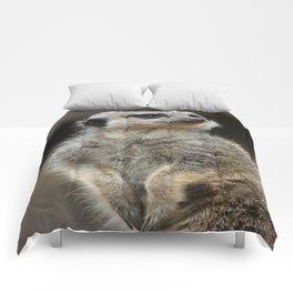 Meerkat Pose Comforters