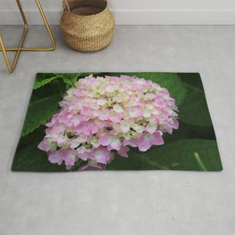 Pink and White Hydrangea  Rug