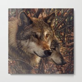 Autumn Wolves Metal Print