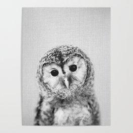 Baby Owl - Black & White Poster