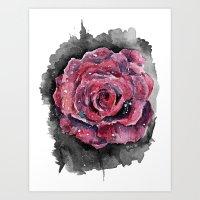 Rose I  Art Print