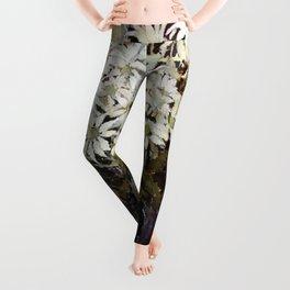 """""""Banksia"""" by Australian Artist Margaret Preston Leggings"""