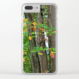 Scattered Sanctuary Clear iPhone Case