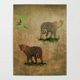 Parrot Flight Through Leopards Poster
