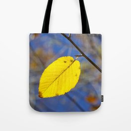 Yellow leaf against blue sky Tote Bag