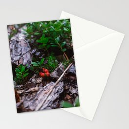 Lingonberry close up at forest in Finland. Wild red lingonberry print. Stationery Cards
