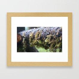 Tiny Living Framed Art Print