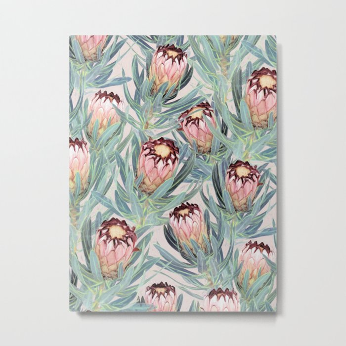 Pale Painted Protea Neriifolia Metal Print
