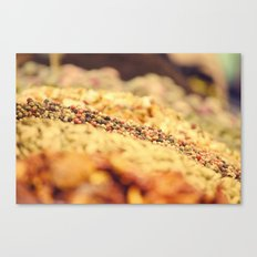 Spicy world Canvas Print
