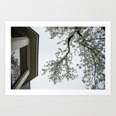 spring bloom reflected in loft window Art Print