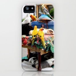 The Great A-meow-ican Melting Pot iPhone Case