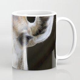 Giraffe portrait, black background Coffee Mug