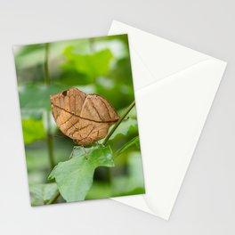 Orange oakleaf, Indian oakleaf or dead leaf, is a nymphalid butterfly Stationery Cards