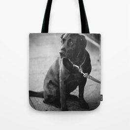 Billy the Dog Tote Bag