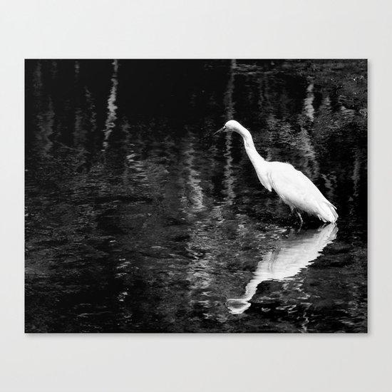 Heron at Millpond Setauket L.I. Canvas Print