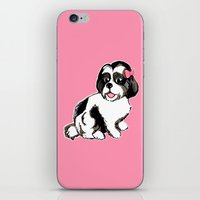 shih tzu iPhone & iPod Skins featuring Shih Tzu Puppy  by Artist Abigail